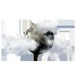 Nuages épars, nappes de brouillard